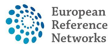 Réseaux européens de référence: Interconnexion de 900 équipes médicales à travers l'Europe, dans l'intérêt des patients